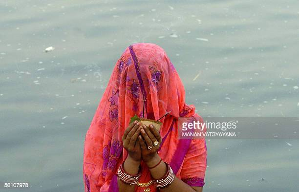 An Indian Hindu devotee stands in the water of the River Yamuna during the Chhat Festival in New Delhi, 07 November 2005, as she prays towards the...