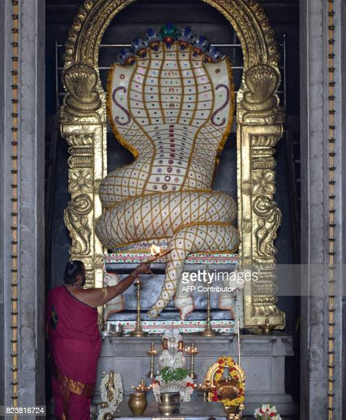 An Indian Hindu priest performs an 'aarati' ritual to a stone figurine of the serpent deity Adishesha at the Mukthi Naga temple to mark the Naga...