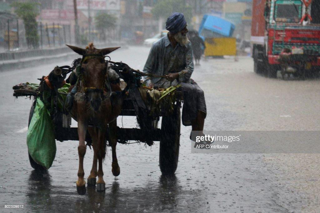 An Indian horsecart driver makes way through heavy monsoon rain in Amritsar on June 28 2017 / AFP PHOTO / NARINDER NANU