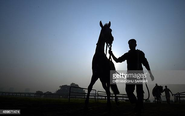 An Indian jockey leads his horse off the track after attending a practice session at The Royal Calcutta Turf Club on a foggy morning in Kolkata on...