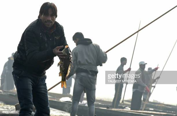 An Indian Kashmiri fisherman shows of a fishing caught with a harpoon in Anchar Lake on the outskirts of Srinagar on December 28 2017 / AFP PHOTO /...