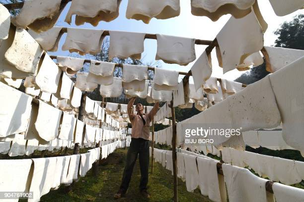 An Indian labour hangs sheets of rubber to dry at a rubber farm in Thakurkuchi village some 35 km from Guwahati on January 14 2018 The national...