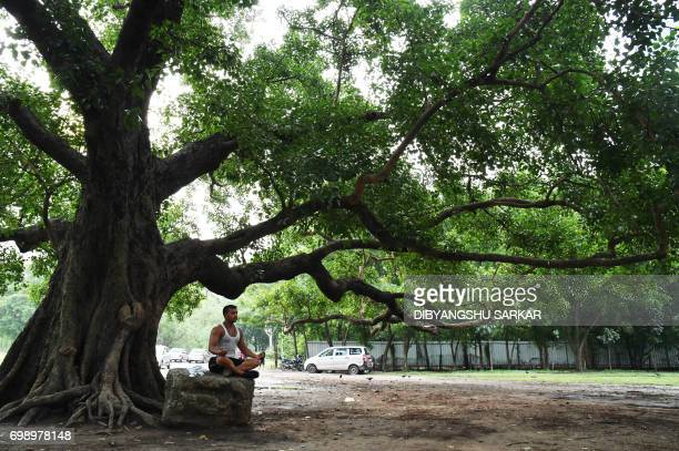 An Indian man performs yoga by a tree during International Yoga Day on The Brigade Parade Grounds in Kolkata on June 21 2017 Yoga has connected the...