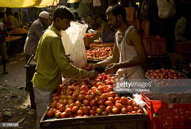 An Indian man sells tomatoes at a vegetable market in New Delhi on October 1, 2009. Indian inflation accelerated sharply as the weakest monsoon in...