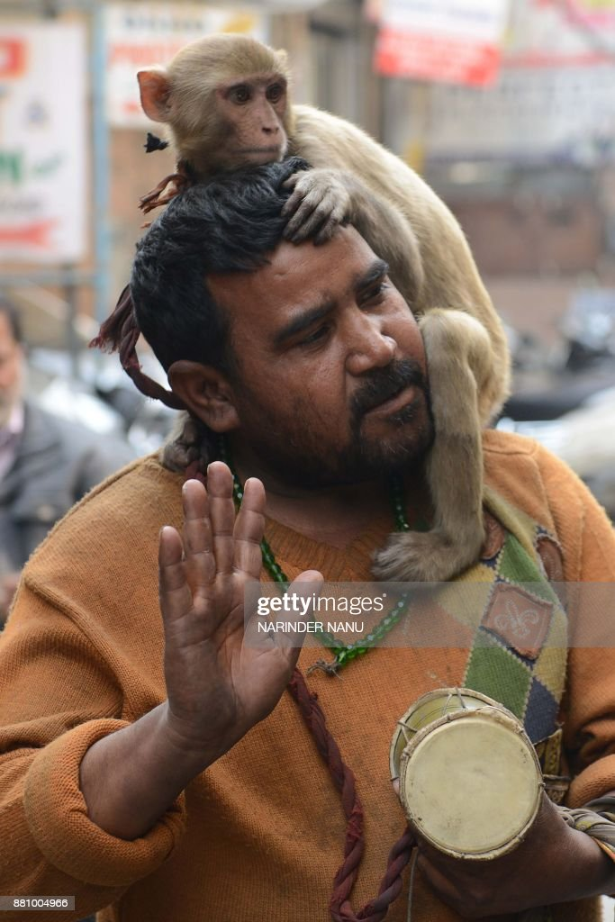 An Indian man with his monkey begs at the roadside in Amritsar on November 28 2017 / AFP PHOTO / NARINDER NANU