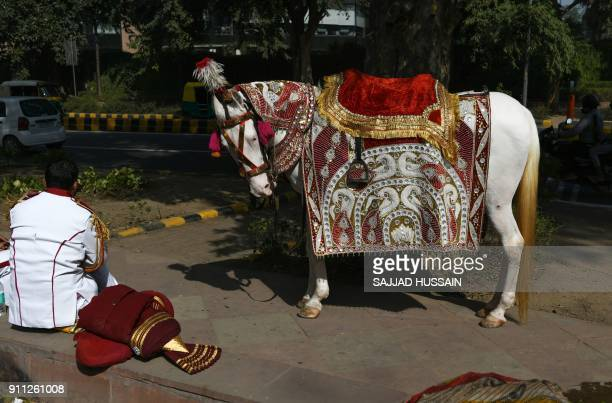 An Indian member of a brass band stands near a decorated horse on the road prior to performing at a wedding in New Delhi on January 28 2018 / AFP...