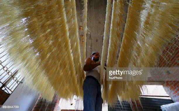 60 Top Vermicelli Pictures, Photos and Images - Getty Images