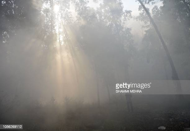 An Indian rag picker walks in the woods surrounded by smoke from garbage dumps that have been set on fire in Jalandhar on November 2 2018 Smog levels...