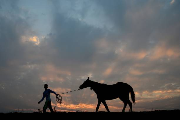 TOPSHOT An Indian resident walks with a horse through fields in Jalandhar on December 10 2017 / AFP PHOTO / Shammi MEHRA