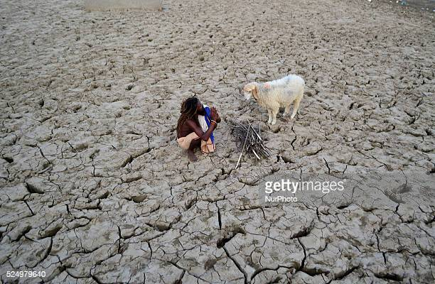 An indian sadhu takes rest in dry surface as he collects wood sticks for cooking food and his daily livinghoodin a dry field in Allahabad on...