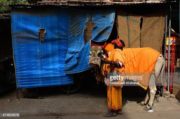An Indian sadhu walks with a holy cow as he ask for alms in New Delhi on May 24 2015 AFP PHOTO / Chandan KHANNA
