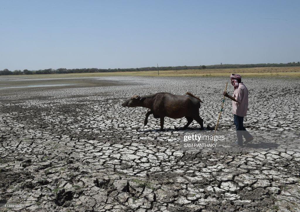 INDIA-ENVIRONMENT-WATER : Foto di attualità