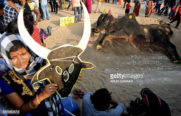An Indian student holds a placards against the animal rights organisation PETA besides sand art depicting a bull during a demonstration against the...