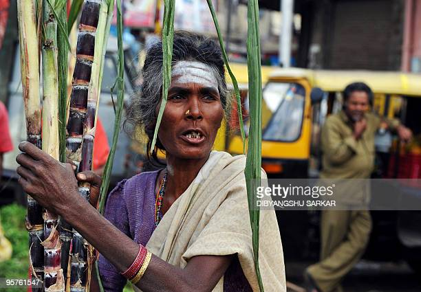 An Indian sugarcane vendor waits for customers for the celebration of the festival of Pongal at the main wholesale market in Bangalore on January 14...