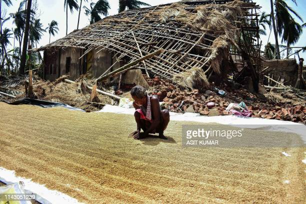 An Indian villager dry rice grains in front of his house destroyed by the cyclone Fani in the Pratap Purushottampur village area of Puri in the...
