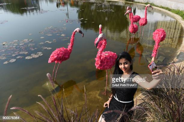 An Indian visitors takes selfie with a flamingo installation made from flowers during the 6th edition of the Ahmedabad Flower show at the Sabarmati...