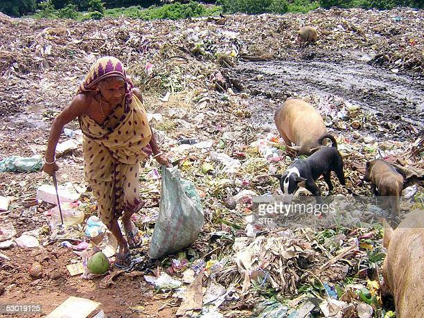 An Indian woman collects plastic for recycling from a municipal dump at Hafani near Agartala the capital of India's northeastern state of Tripura 04...