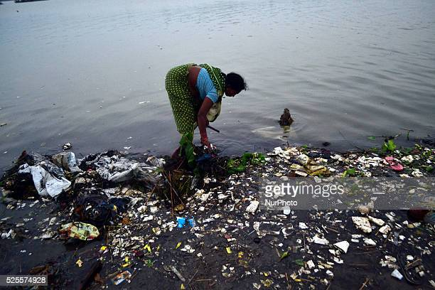 An Indian woman finds the coins and other valuable things which devotees offer during prayers on the polluted river banks of River Gangesin Allahabad...