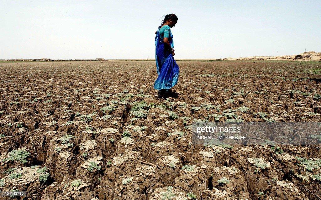 INDIA-WEATHER-HEAWAVE-DRY LAKE-WOMAN : News Photo