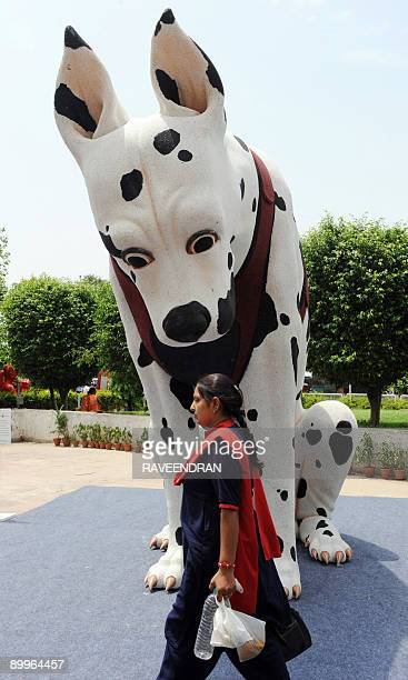An Indian woman walks past sculptor Ved Prakash Gupat's work 'Dog democracy threshold' a 117x135x84 inch polymer resin exhibit on display at The...