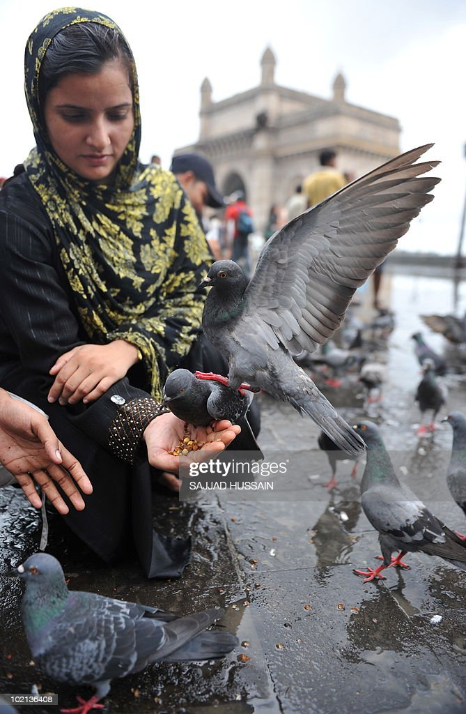 An Indian women feeds pigeons in front of the landmark Gateway of India monument following monsoon rains in Mumbai on June 16, 2010. India's monsoon, the annual downpour crucial to farmers and national economic growth, hit the western Indian city of Mumbai this week with hopes high for better rains than last year. The Indian government is hoping for a good monsoon to tame soaring food prices after last year's drought, the worst in 37 years, brought poor harvests and despair to farmers. AFP PHOTO/ Sajjad HUSSAIN