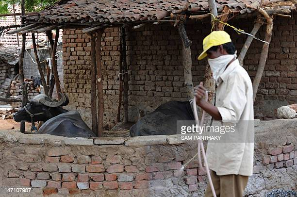 An Indian worker from the Ahmedabad District Health Department sprays Deltamathrin to counter ticks in the village of Kochariya of Bavla Taluka some...