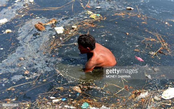 An Indian worker removes religious offerings and frames of the idol of goddess Durga which were immersed in the Yamuna river after the Durga Puja...
