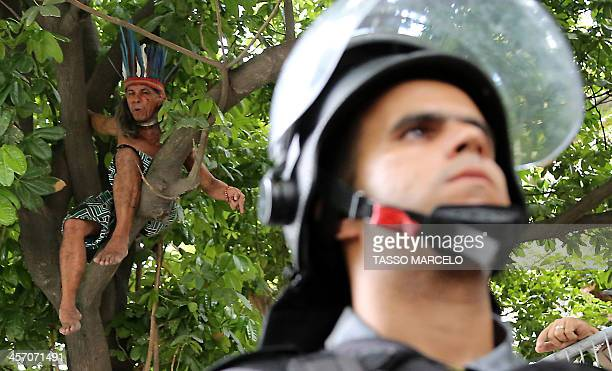An indigenous activist climbs up a tree during a demonstration at the Museu do Indio Aldea Maracana in Rio de Janeiro Brazil on December 16 2013 The...