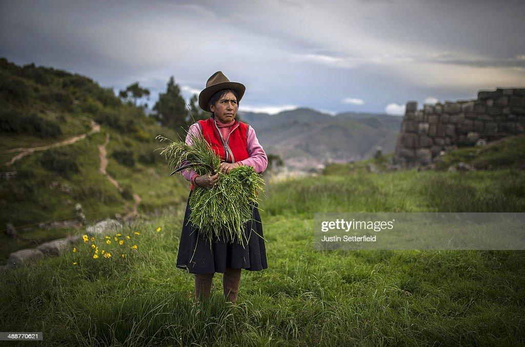 Touring In Peru : Fotografía de noticias