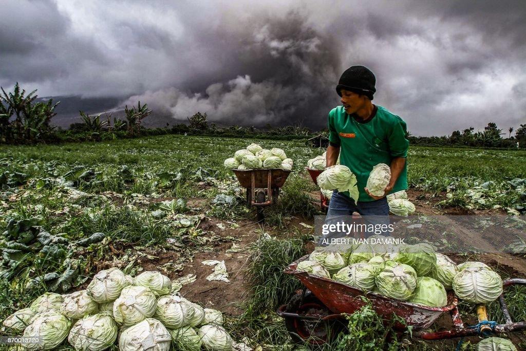TOPSHOT-INDONESIA-VOLCANO : News Photo