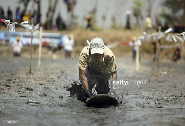 An Indonesian fishermen races during a mud surfing competition in Luwukrejo village in East Java province on September 7 2011 A halfdrained fishpond...