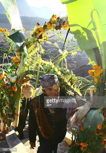 An Indonesian Hindu pilgrim carries an offering to the crater of Mount Bromo in East Java on August 26 2010 as part of the traditional Kasada...