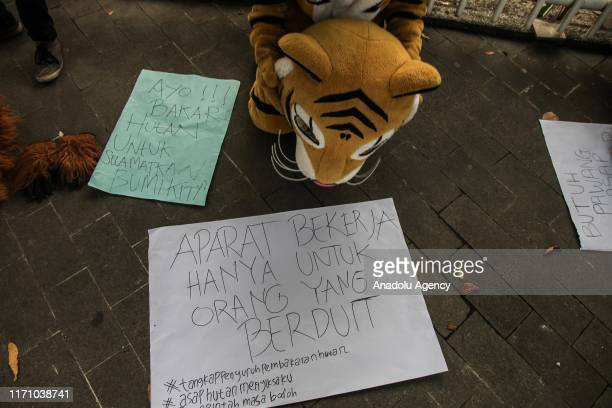 An Indonesian student wearing a tiger costume holds the while sitting near banners during a protest against climate damage in Medan North Sumatra...
