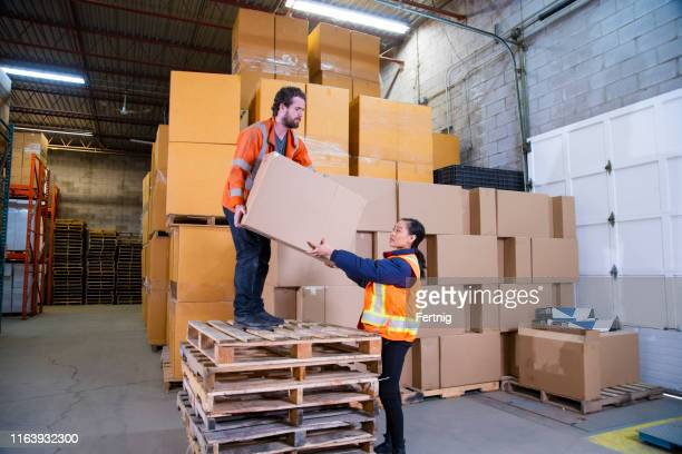 an industrial warehouse workplace safety topic.  an employee standing unsafely on a stack of pallets to reach higher placed boxes. - picking up stock pictures, royalty-free photos & images