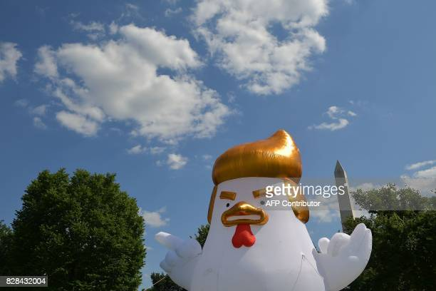 An inflatable chicken mimicking US President Donald Trump is set up on The Ellipse a 52acre park located just south of the White House and north of...