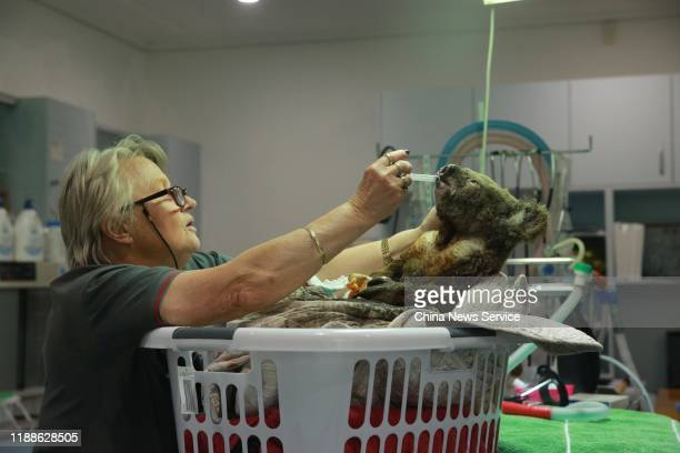 An injured koala receives treatment after its rescue from a bushfire at the Port Macquarie Koala Hospital on November 19 2019 in Port Macquarie...