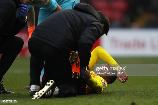 An injured Sebastian Prodl of Watford during the Premier League match between Watford and West Bromwich Albion at Vicarage Road on March 3 2018 in...