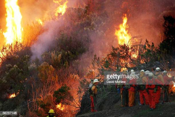 An inmate hand crew prepares to fight the School Canyon Fire on November 18 2005 in Ventura California The lateseason wildfire has burned across more...