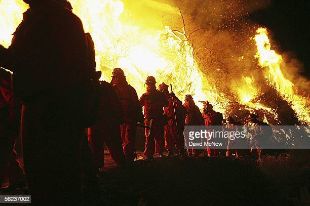 An inmate hand crew walks past flames at the School Canyon Fire on November 18 2005 in Ventura California The lateseason wildfire has burned across...