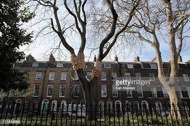 An installation consisting of a series of bird boxes is displayed in a tree in Duncan Terrace Gardens in Islington on March 24 2011 in London England...