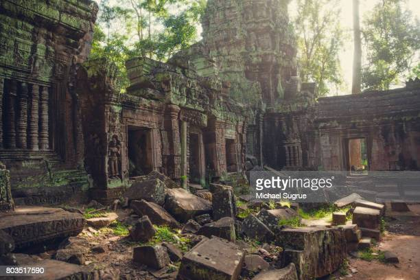 an interior view of ta prohm temple, near angkor wat, siem reap, cambodia. - archaeology stock pictures, royalty-free photos & images