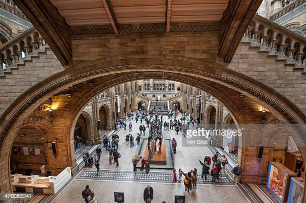 CONTENT] An interior view of the Natural History Museum including visitors walking under an arch