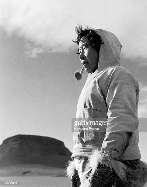 An Inuit Hunter From Thule Poses For The Picture Between 1950 And 1960
