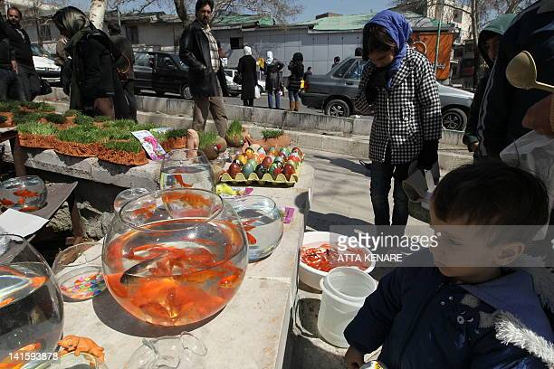 An Iranian child looks at goldfish for sale ahead of celebrations in Tehran for the Persian New Year or Noruz on March 19 2012 Iranians are preparing...