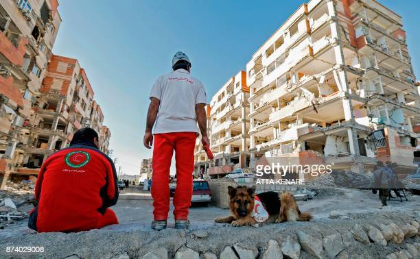 TOPSHOT An Iranian civil defence K9 unit wait near damaged buildings during a search for survivors in the town of Sarpole Zahab in the western...