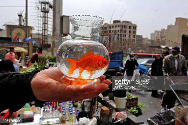 An Iranian man holds a goldfish in a bowl at the Tajrish Bazaar in Tehran on March 17, 2021 as Iran prepares to celebrate Nowruz, the Iranian New...