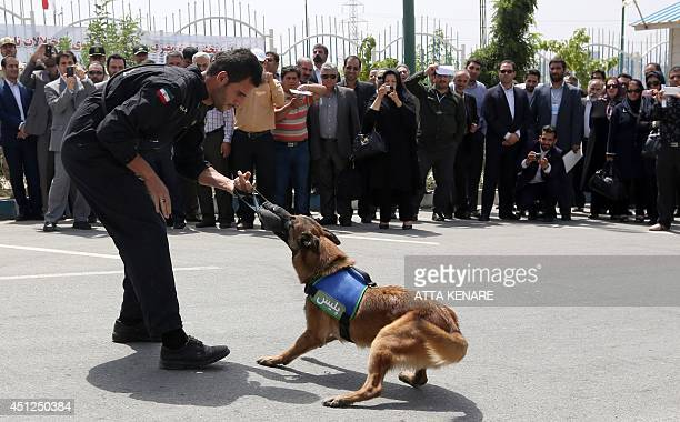 An Iranian policeman displays the bite force of his sniffer dog in eastern Tehran on June 26 2014 to mark the International Day Against Drug Abuse...