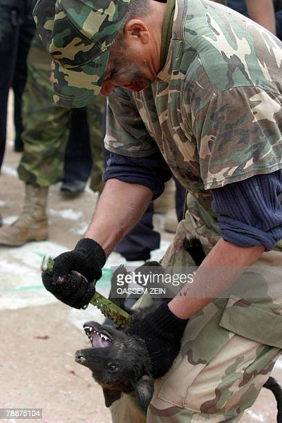 An Iraqi army soldier kills a dog with a dagger during a ceremony marking the first anniversary of authority transfer to Iraqi forces in the Shiite...