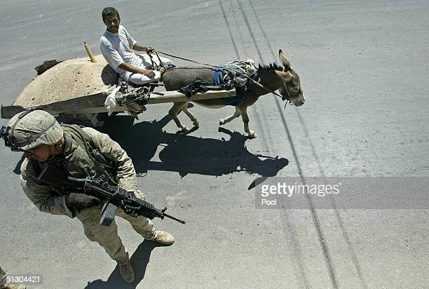 An Iraqi civilian riding a donkeydrawn cart passes near a US Marine patrolling on September 14 2004 in the Iraqi Holy city of Najaf Weeks of battles...