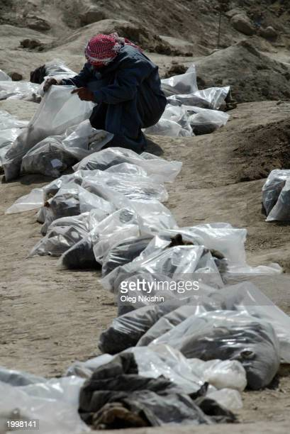 An Iraqi man searches bodies exhumed from a mass grave May 14 2003 in Mahaweel central Iraq Local residents dug up the remains of roughly 3000 people...